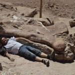 Un membro del team fotografato vicino ad un fossile(foto:dr. Alejandro Otero)