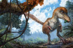 Trovata ambra contentente un frammento di coda di dinosauro