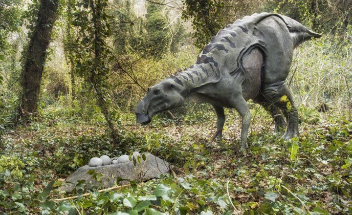 La mostra 'Dinosauri in carne e ossa' all' oasi degli Astroni (Napoli)